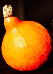 Onion Squash